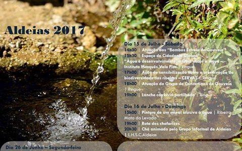 Festival da Água